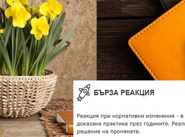 Ре-дизайн на лого, дизайн на пектограми, нов сайт и брандинг в социалните мрежи на БОНЕВ СОФТ ОДИТИНГ ООД